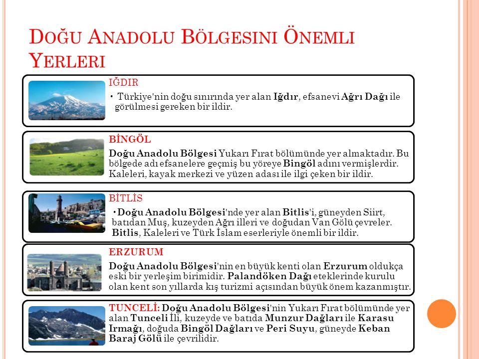 D OĞU A NADOLU B ÖLGESINI Ö NEMLI Y ERLERI IĞDIR Türkiye'nin doğu sınırında yer alan Iğdır, efsanevi Ağrı Dağı ile görülmesi gereken bir ildir. BİNGÖL