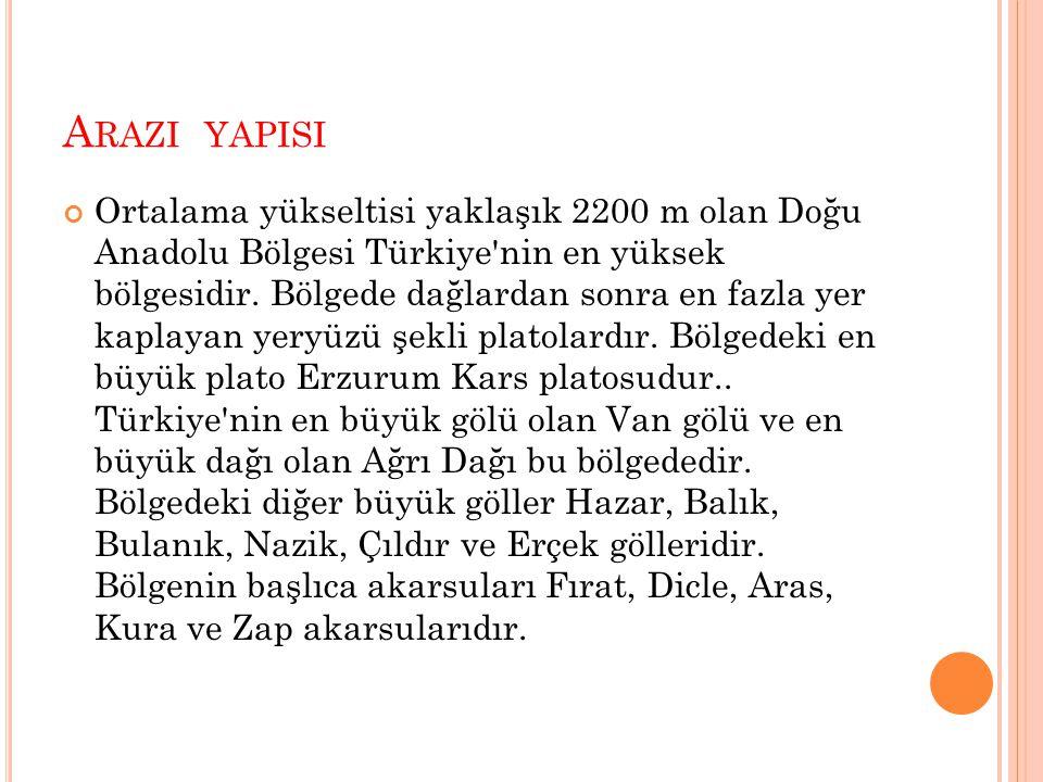 A RAZI YAPISI Ortalama yükseltisi yaklaşık 2200 m olan Doğu Anadolu Bölgesi Türkiye'nin en yüksek bölgesidir. Bölgede dağlardan sonra en fazla yer kap