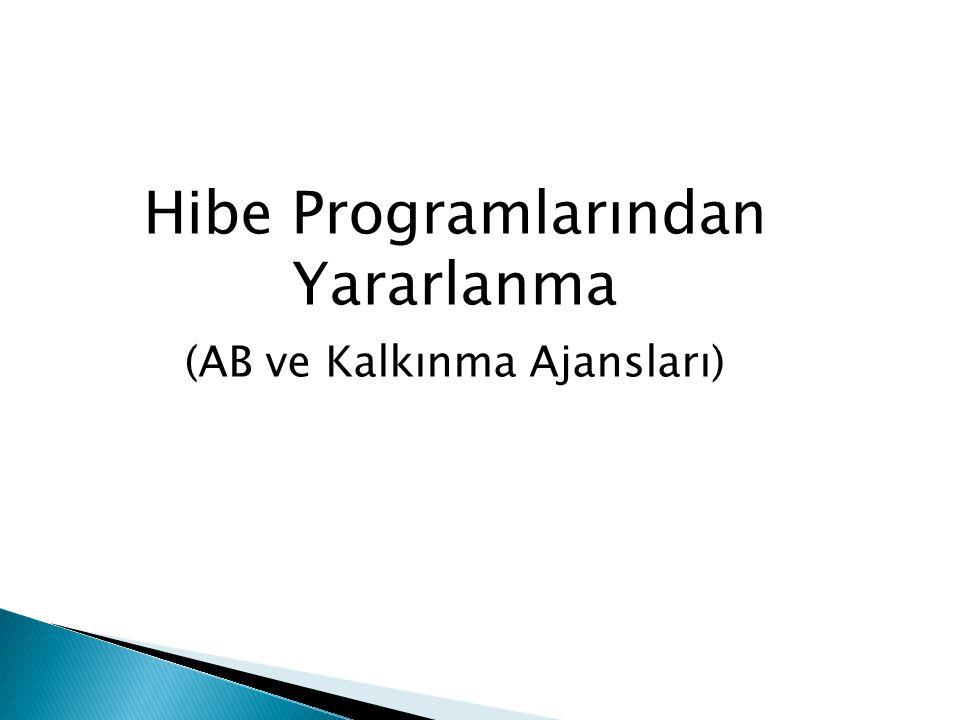 Hibe Programlarından Yararlanma (AB ve Kalkınma Ajansları)