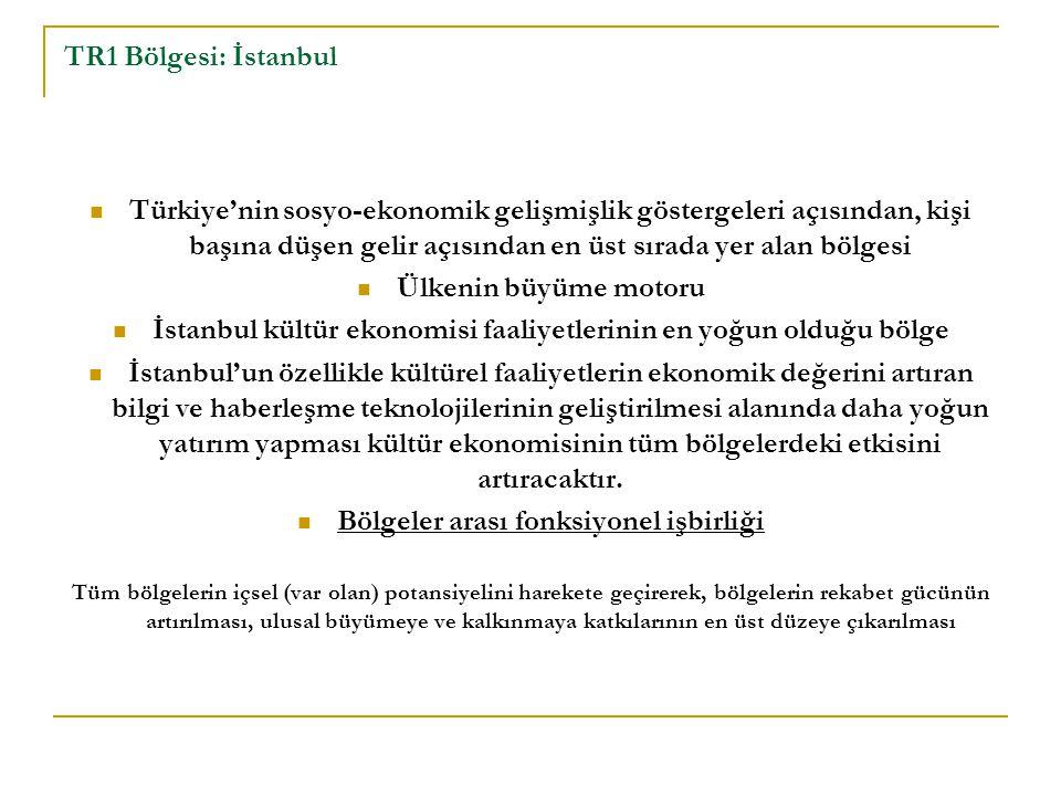 TR1 Bölgesi: İstanbul Türkiye'nin sosyo-ekonomik gelişmişlik göstergeleri açısından, kişi başına düşen gelir açısından en üst sırada yer alan bölgesi Ülkenin büyüme motoru İstanbul kültür ekonomisi faaliyetlerinin en yoğun olduğu bölge İstanbul'un özellikle kültürel faaliyetlerin ekonomik değerini artıran bilgi ve haberleşme teknolojilerinin geliştirilmesi alanında daha yoğun yatırım yapması kültür ekonomisinin tüm bölgelerdeki etkisini artıracaktır.