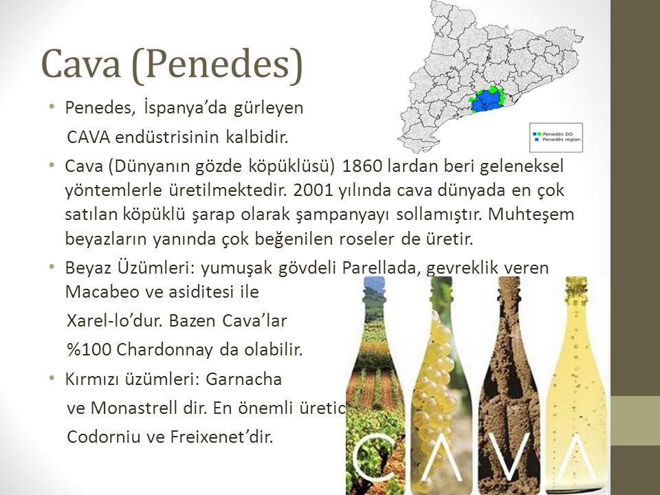 Cava (Penedes) Penedes, İspanya'da gürleyen CAVA endüstrisinin kalbidir.
