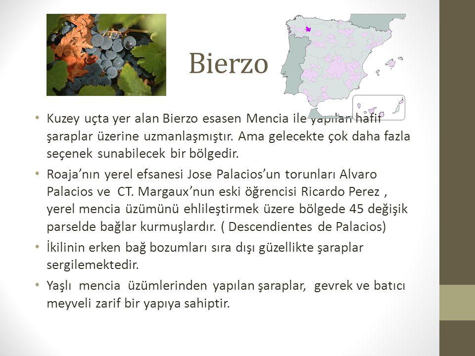 Bierzo Kuzey uçta yer alan Bierzo esasen Mencia ile yapılan hafif şaraplar üzerine uzmanlaşmıştır.