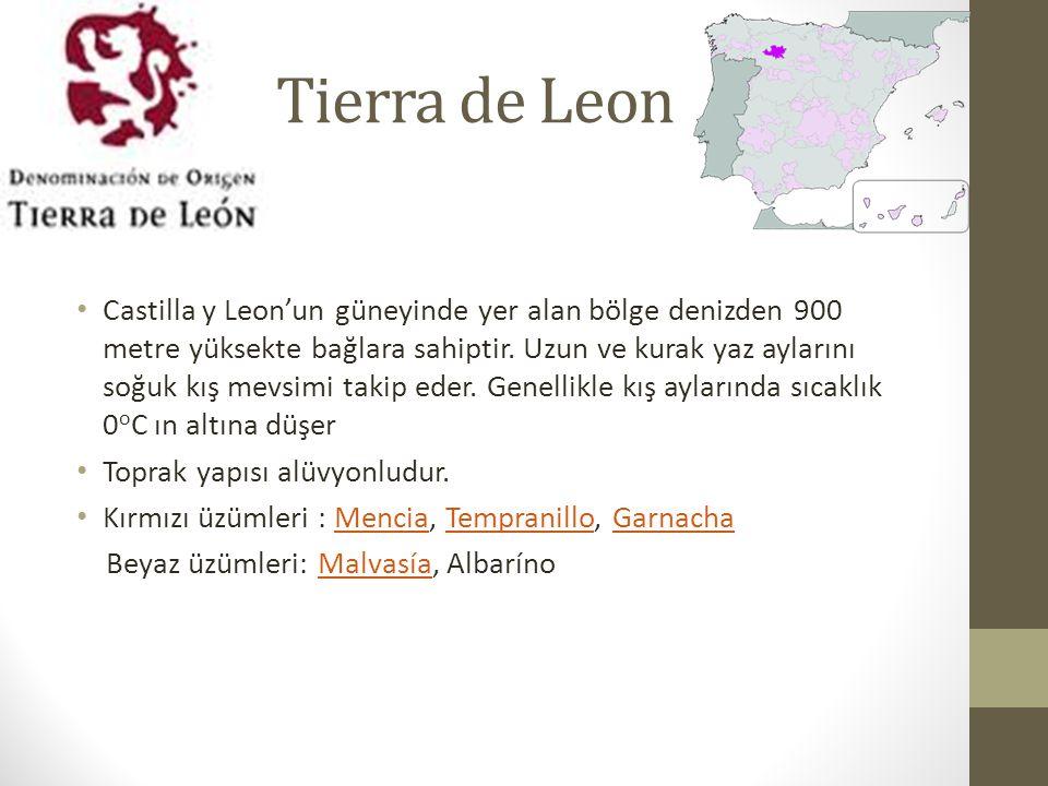 Tierra de Leon Castilla y Leon'un güneyinde yer alan bölge denizden 900 metre yüksekte bağlara sahiptir.