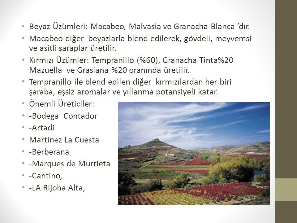 Beyaz Üzümleri: Macabeo, Malvasia ve Granacha Blanca 'dır.