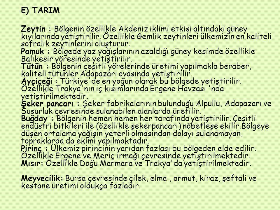 D) Nüfus ve Yerleşme Bölge küçük olmasına karşın nüfusu en fazla olan bölgemizdir. Nüfus yoğunluğu Türkiye ortalamasının üstündedir. Marmara Bölgesi'n