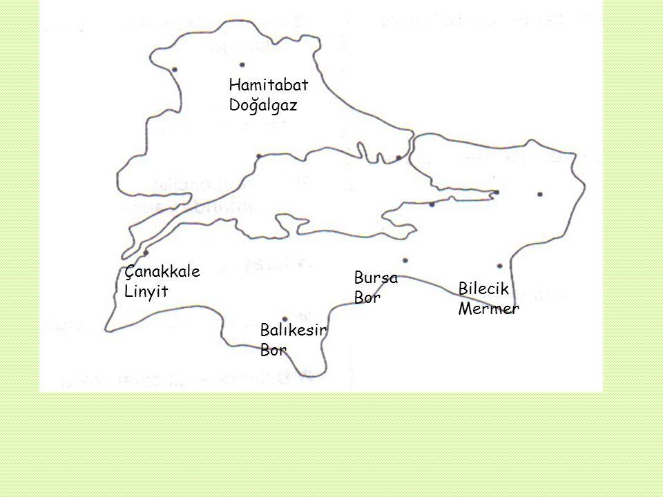 F) YER ALTI ZENGİNLİKLERİ: Mermer :Marmara Adası ve Bilecik'te kaliteli mermer yatakları vardır. Bor mineralleri: Balıkesir (Bigadiç, Susurluk) Bursa