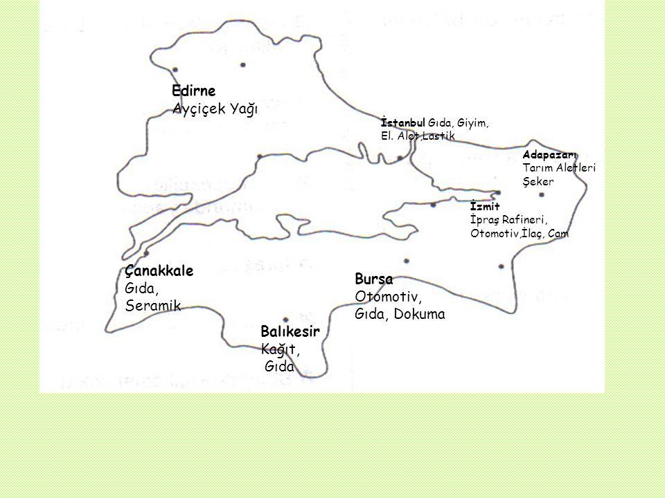 G-)SANAYİ: İzmit : İpraş rafinerisi,beyaz eşya fabrikası, otomotiv, kağıt, boru,petrokimya,ilaç,alüminyum,makine, cam,gübre İstanbul : Gıda,yünlü ve i