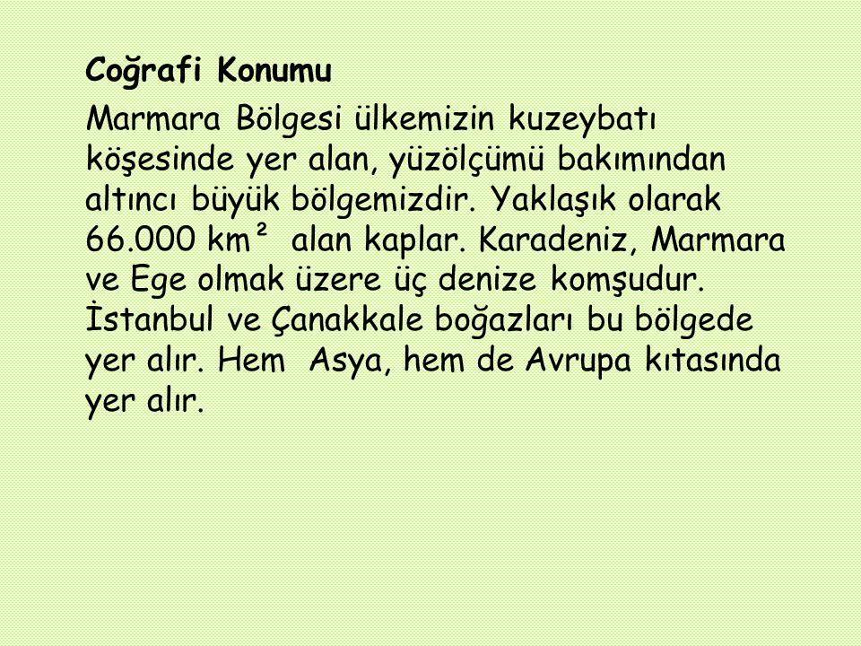 F) YER ALTI ZENGİNLİKLERİ: Mermer :Marmara Adası ve Bilecik te kaliteli mermer yatakları vardır.