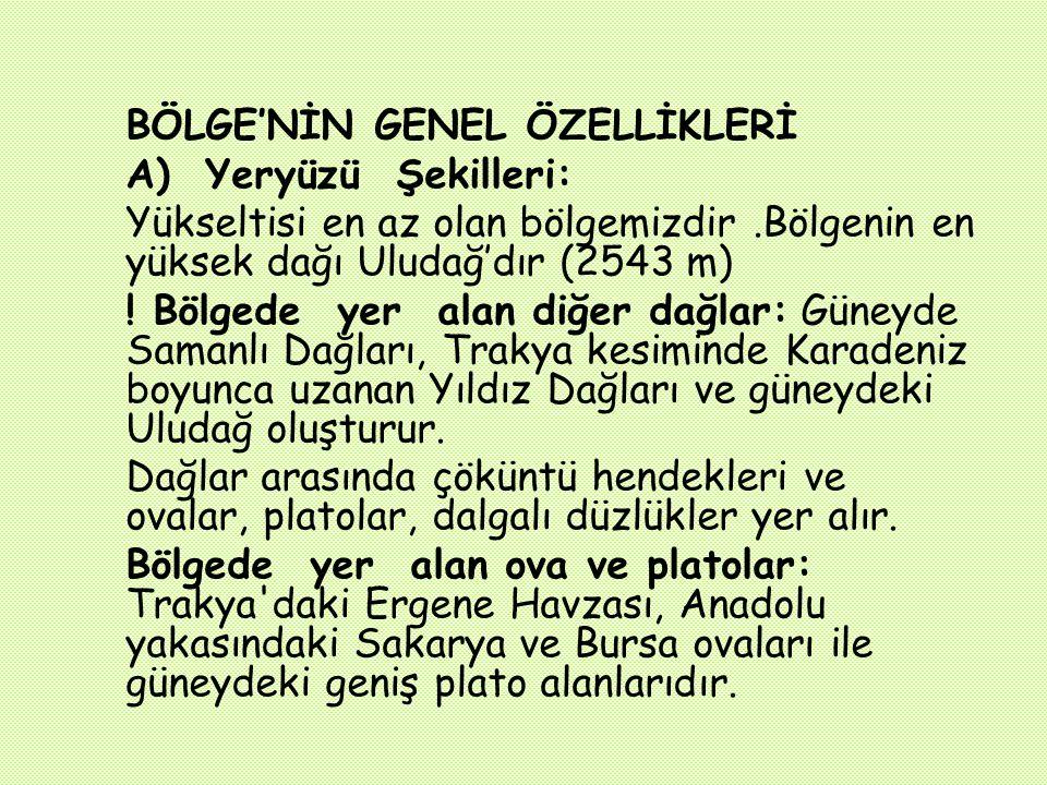 Edirne Kırklareli Tekirdağİstanbul Çanakkale Balıkesir Bursa Bilecik Yalova İzmit Adapazarı Marmara Bölgesi'nin İlleri