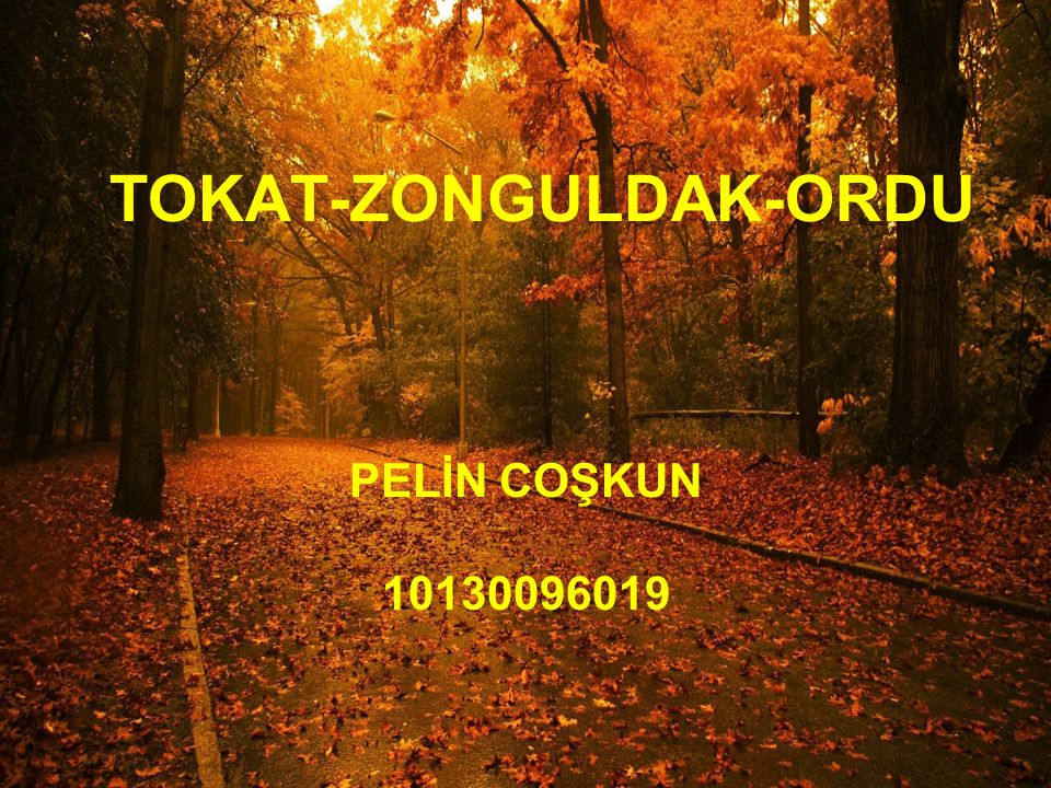TOKAT-ZONGULDAK-ORDU PELİN COŞKUN 10130096019
