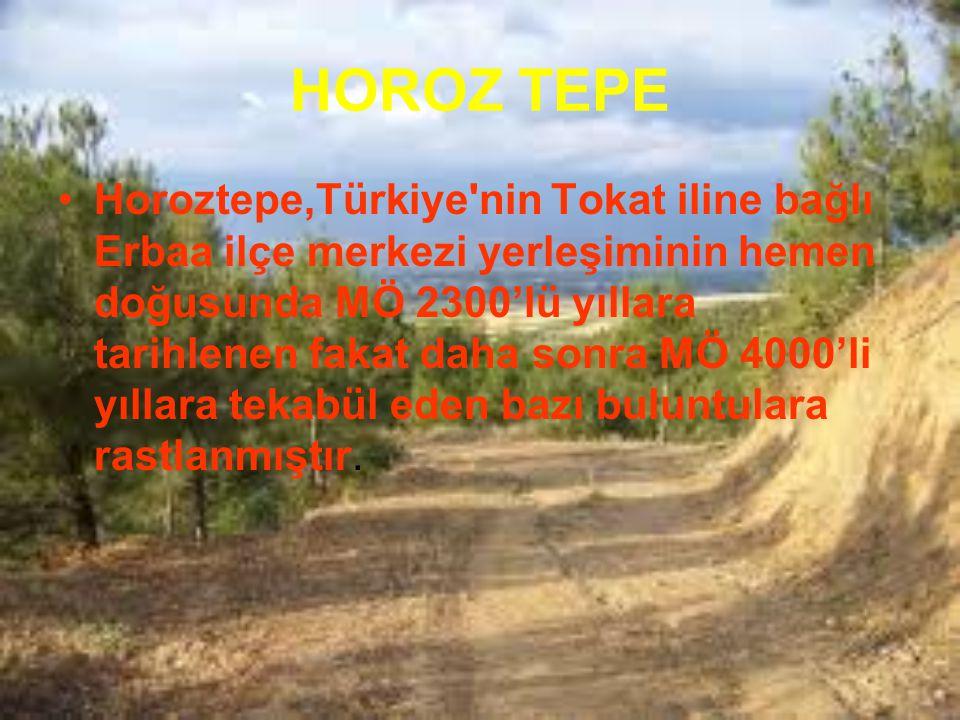 HOROZ TEPE Horoztepe,Türkiye'nin Tokat iline bağlı Erbaa ilçe merkezi yerleşiminin hemen doğusunda MÖ 2300'lü yıllara tarihlenen fakat daha sonra MÖ 4