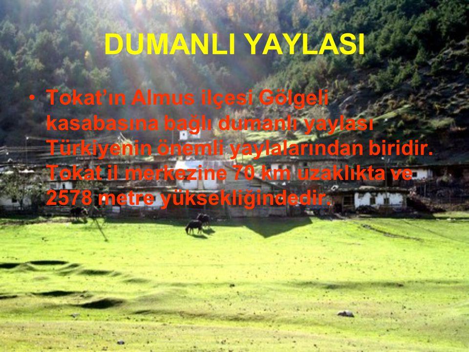 DUMANLI YAYLASI Tokat'ın Almus ilçesi Gölgeli kasabasına bağlı dumanlı yaylası Türkiyenin önemli yaylalarından biridir. Tokat il merkezine 70 km uzakl