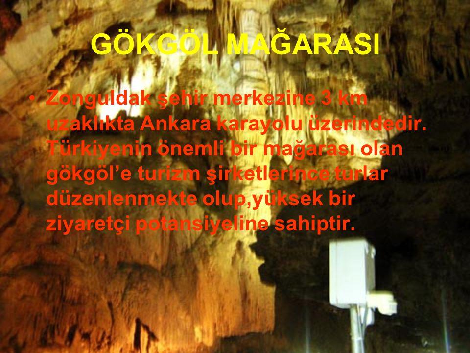 Zonguldak şehir merkezine 3 km uzaklıkta Ankara karayolu üzerindedir. Türkiyenin önemli bir mağarası olan gökgöl'e turizm şirketlerince turlar düzenle