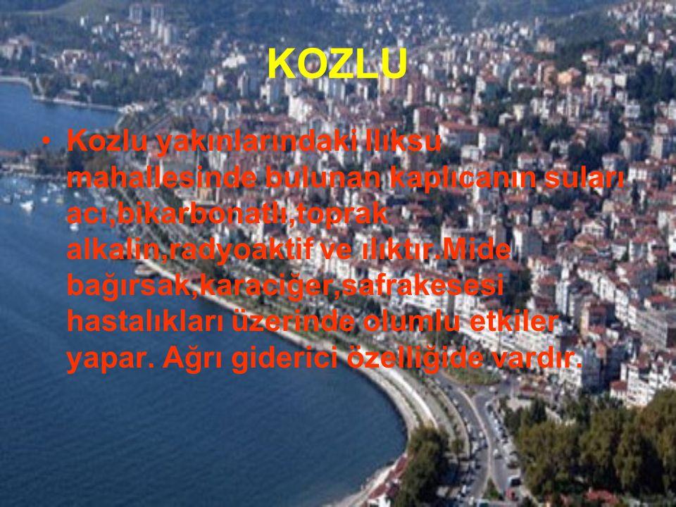 KOZLU Kozlu yakınlarındaki Ilıksu mahallesinde bulunan kaplıcanın suları acı,bikarbonatlı,toprak alkalin,radyoaktif ve ılıktır.Mide bağırsak,karaciğer