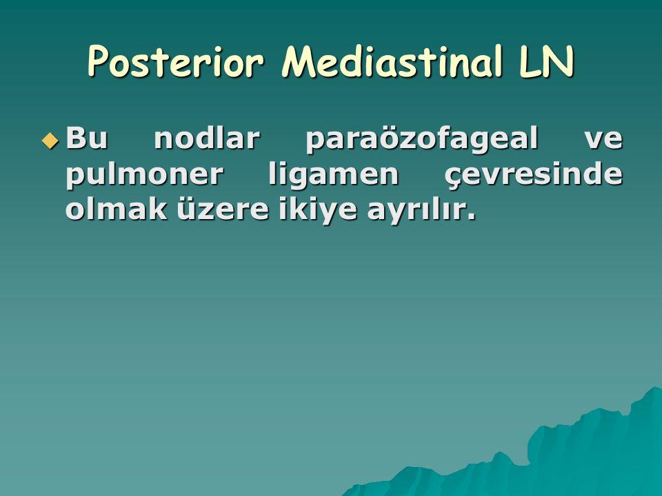 Posterior Mediastinal LN  Bu nodlar paraözofageal ve pulmoner ligamen çevresinde olmak üzere ikiye ayrılır.