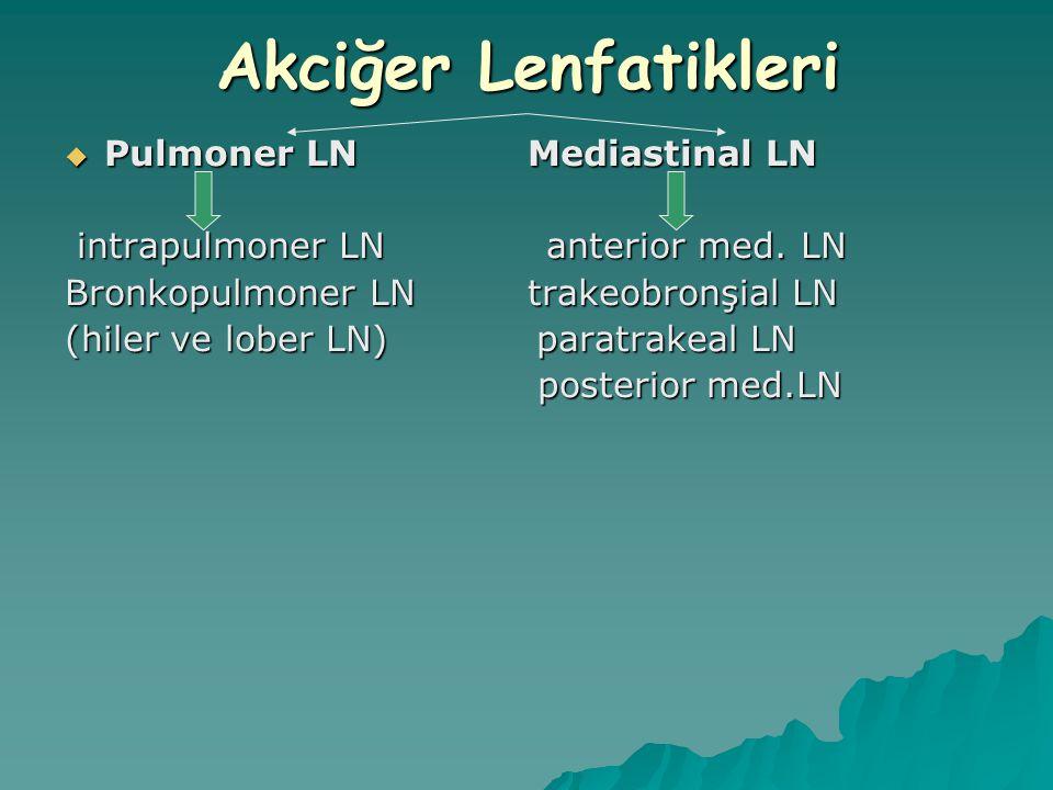 Akciğer Lenfatikleri  Pulmoner LN Mediastinal LN intrapulmoner LN anterior med. LN intrapulmoner LN anterior med. LN Bronkopulmoner LN trakeobronşial