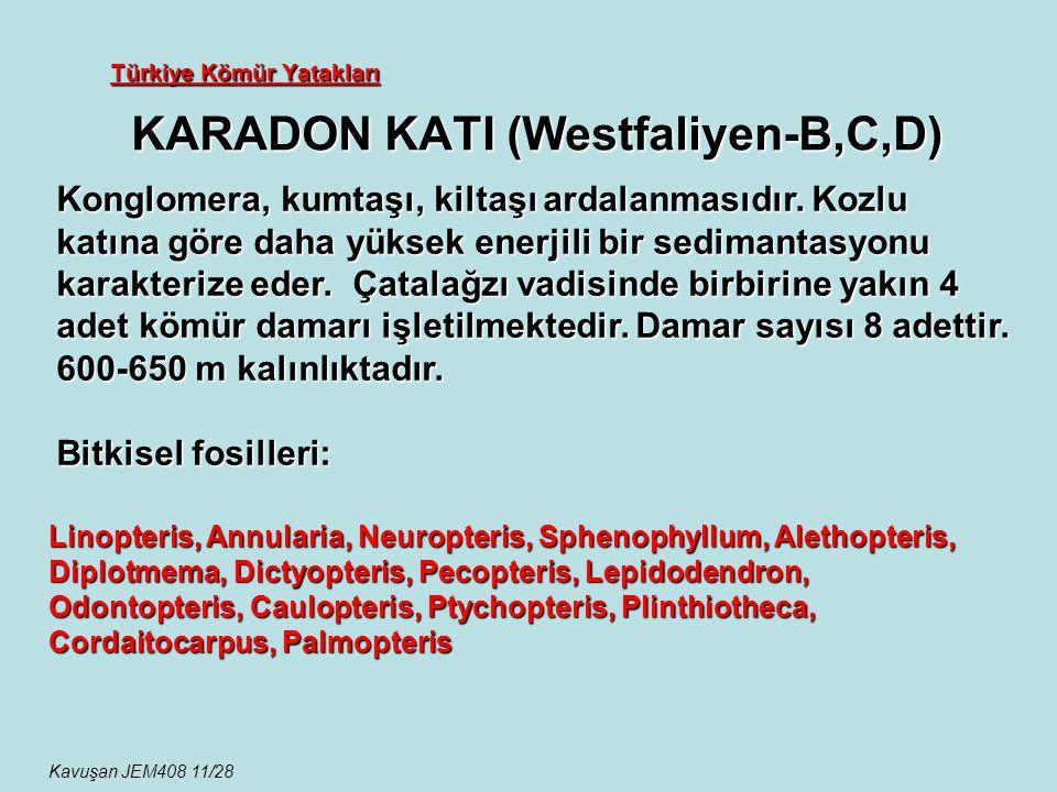 Türkiye Kömür Yatakları KARADON KATI (Westfaliyen-B,C,D) Konglomera, kumtaşı, kiltaşı ardalanmasıdır. Kozlu katına göre daha yüksek enerjili bir sedim