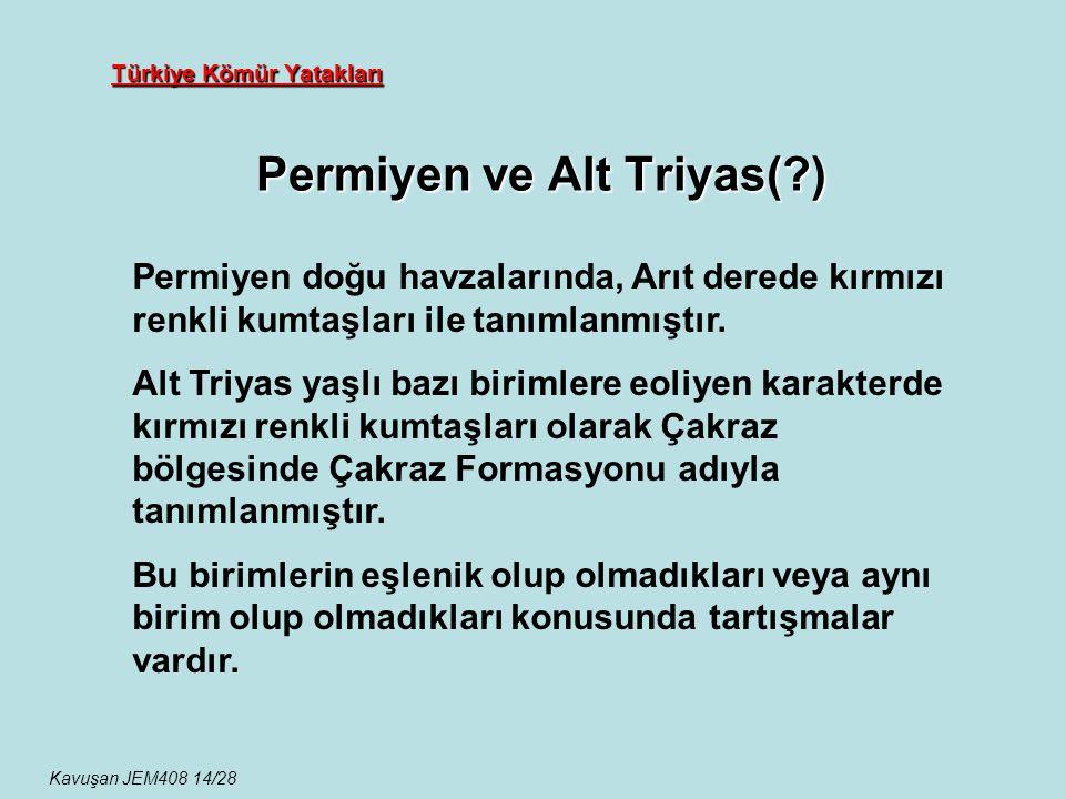 Türkiye Kömür Yatakları Permiyen ve Alt Triyas(?) Kavuşan JEM408 14/28 Permiyen doğu havzalarında, Arıt derede kırmızı renkli kumtaşları ile tanımlanm