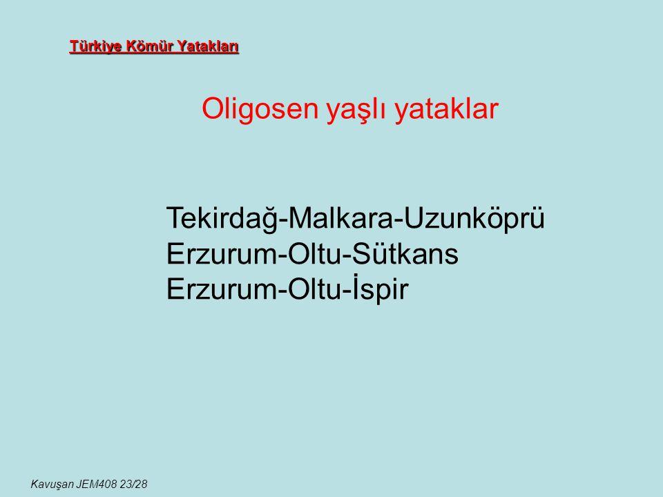 Türkiye Kömür Yatakları Oligosen yaşlı yataklar Kavuşan JEM408 23/28 Tekirdağ-Malkara-Uzunköprü Erzurum-Oltu-Sütkans Erzurum-Oltu-İspir