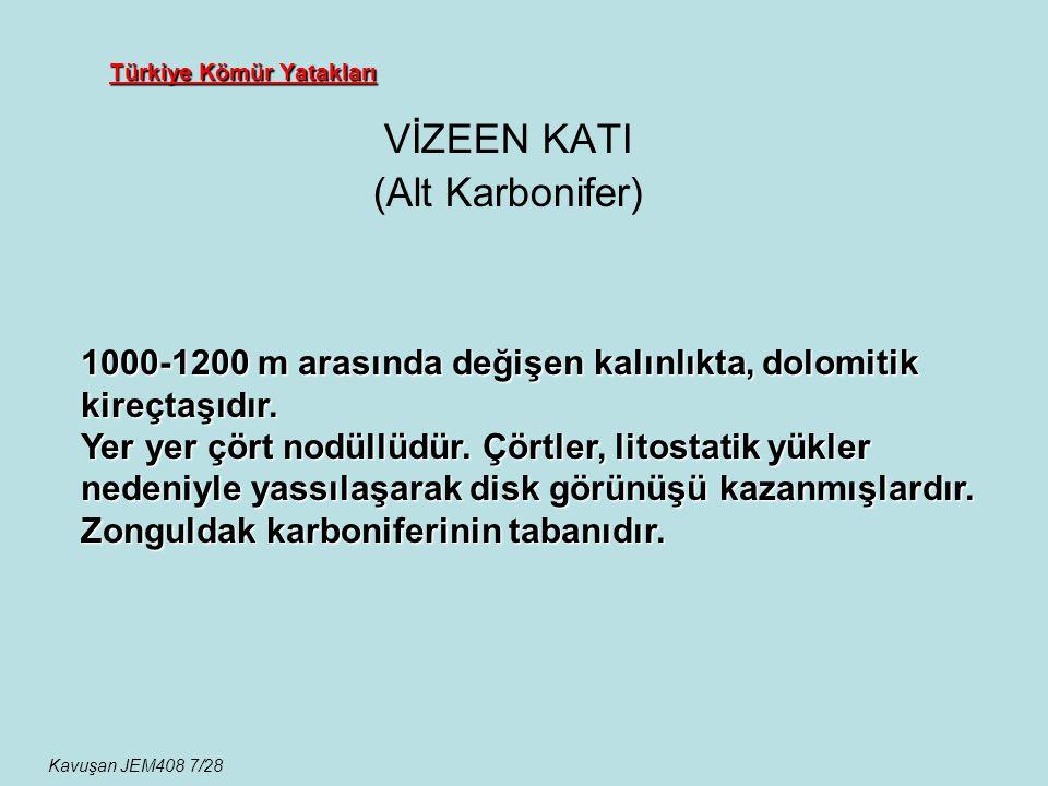 Türkiye Kömür Yatakları VİZEEN KATI (Alt Karbonifer) 1000-1200 m arasında değişen kalınlıkta, dolomitik kireçtaşıdır. Yer yer çört nodüllüdür. Çörtler