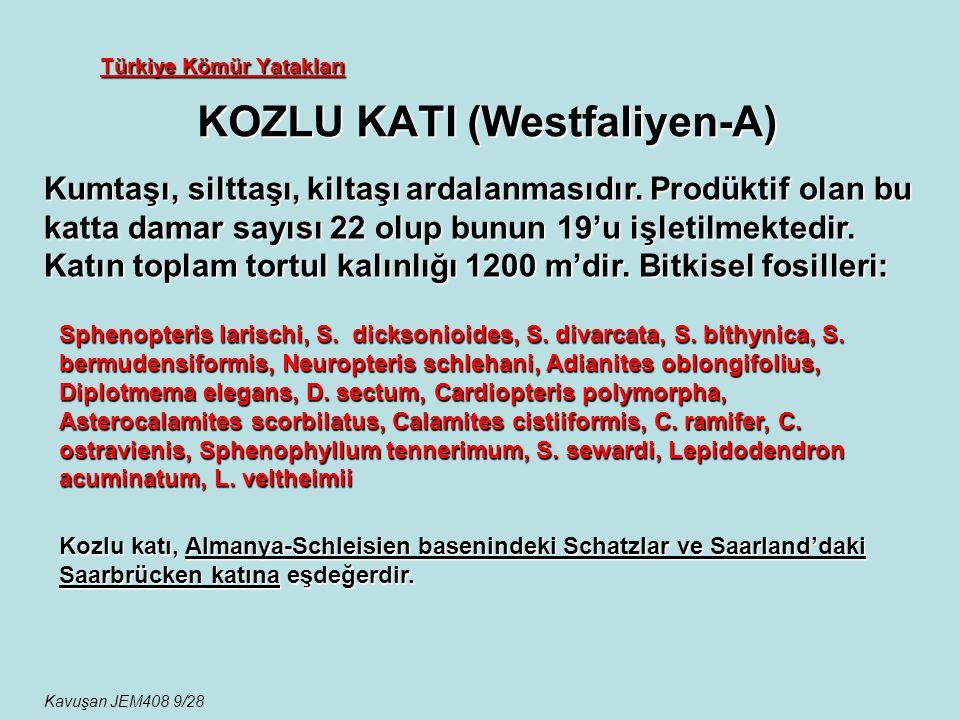 Türkiye Kömür Yatakları KOZLU KATI (Westfaliyen-A) Kumtaşı, silttaşı, kiltaşı ardalanmasıdır. Prodüktif olan bu katta damar sayısı 22 olup bunun 19'u