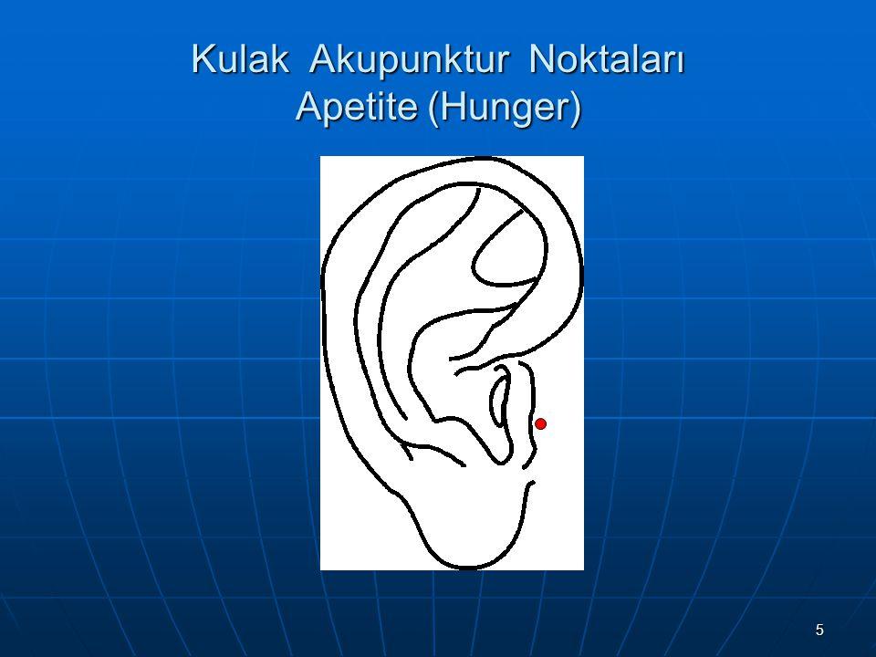 16 Kulak Akupunktur Noktaları Sıfır Noktası