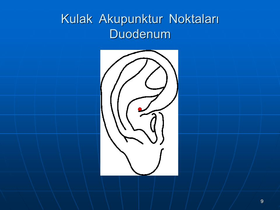 10 Kulak Akupunktur Noktaları İnce Barsak