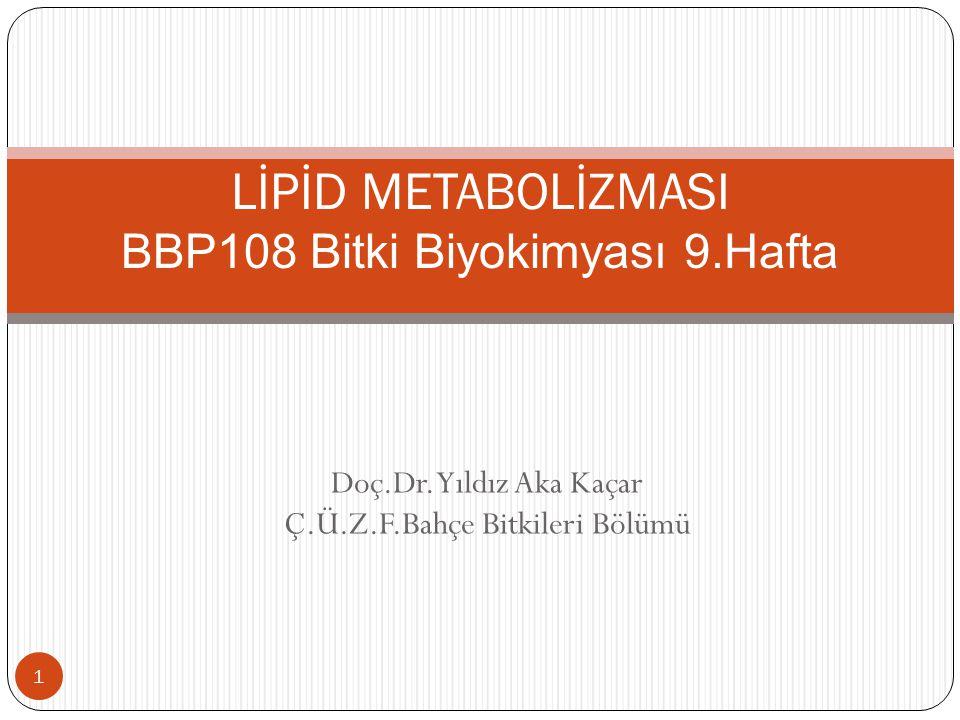 Yağ asitlerinin sınıflandırılmaları 12 -Doymuş yağ asitleri -Doymamış yağ asitleri