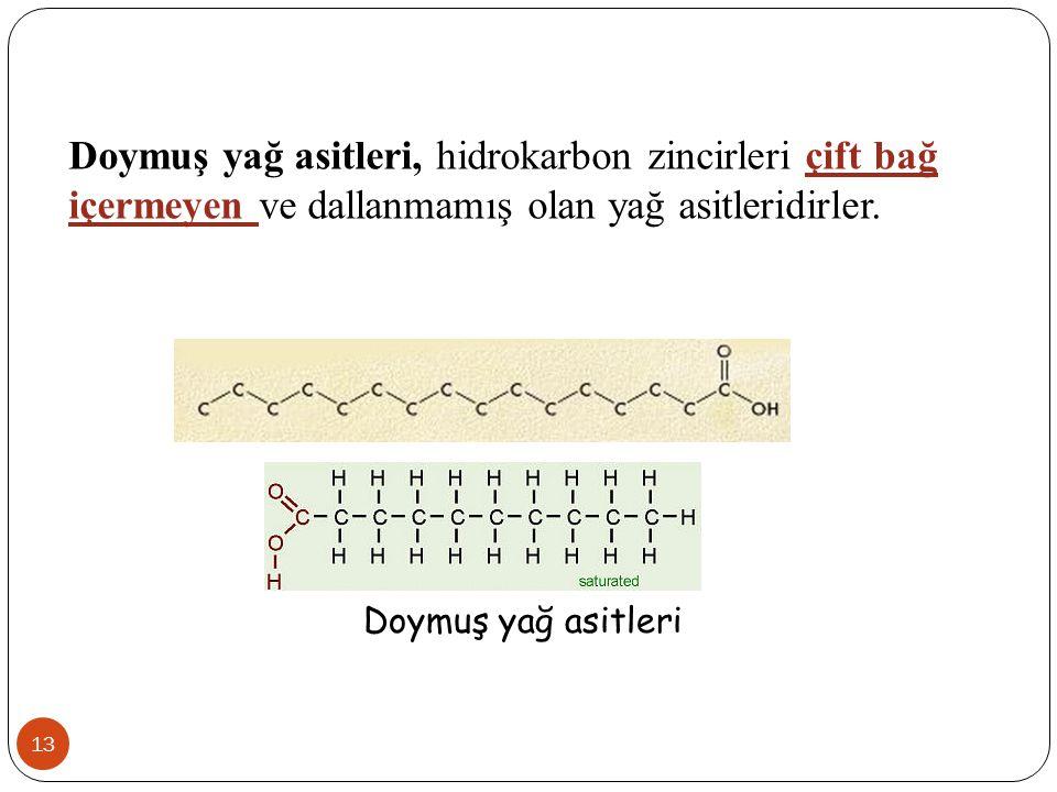 13 Doymuş yağ asitleri, hidrokarbon zincirleri çift bağ içermeyen ve dallanmamış olan yağ asitleridirler. Doymuş yağ asitleri