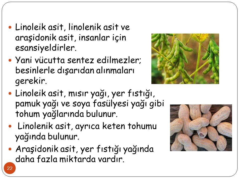 22 Linoleik asit, linolenik asit ve araşidonik asit, insanlar için esansiyeldirler. Yani vücutta sentez edilmezler; besinlerle dışarıdan alınmaları ge