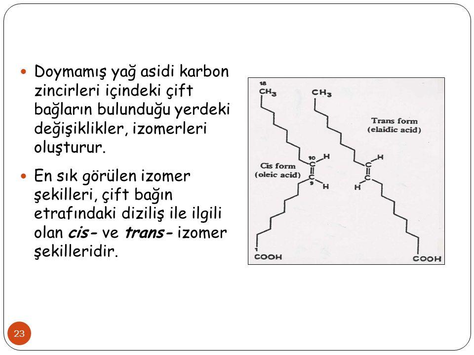 23 Doymamış yağ asidi karbon zincirleri içindeki çift bağların bulunduğu yerdeki değişiklikler, izomerleri oluşturur. En sık görülen izomer şekilleri,