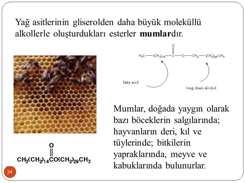 24 Yağ asitlerinin gliserolden daha büyük moleküllü alkollerle oluşturdukları esterler mumlardır. Mumlar, doğada yaygın olarak bazı böceklerin salgıla