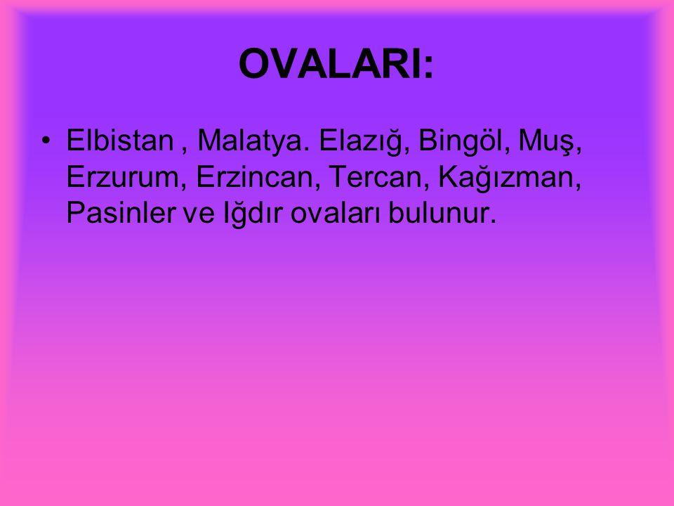 OVALARI: Elbistan, Malatya. Elazığ, Bingöl, Muş, Erzurum, Erzincan, Tercan, Kağızman, Pasinler ve Iğdır ovaları bulunur.