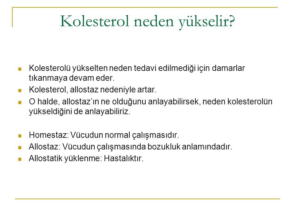 Kolesterol neden yükselir? Kolesterolü yükselten neden tedavi edilmediği için damarlar tıkanmaya devam eder. Kolesterol, allostaz nedeniyle artar. O h