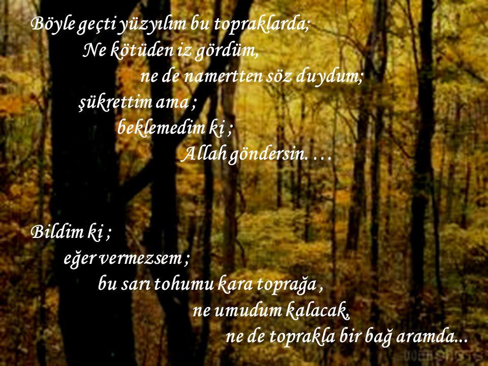 Böyle geçti yüzyılım bu topraklarda; Ne kötüden iz gördüm, ne de namertten söz duydum; şükrettim ama ; beklemedim ki ; Allah göndersin.