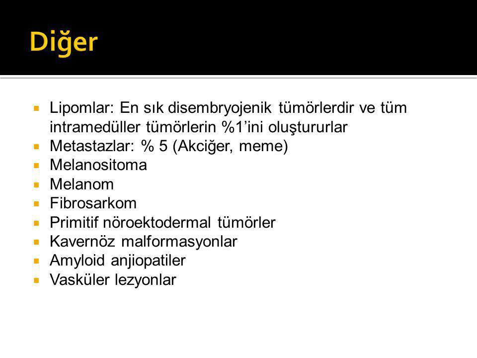  Lipomlar: En sık disembryojenik tümörlerdir ve tüm intramedüller tümörlerin %1'ini oluştururlar  Metastazlar: % 5 (Akciğer, meme)  Melanositoma  Melanom  Fibrosarkom  Primitif nöroektodermal tümörler  Kavernöz malformasyonlar  Amyloid anjiopatiler  Vasküler lezyonlar
