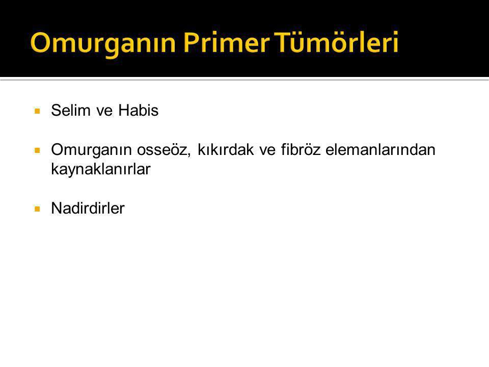  Selim ve Habis  Omurganın osseöz, kıkırdak ve fibröz elemanlarından kaynaklanırlar  Nadirdirler