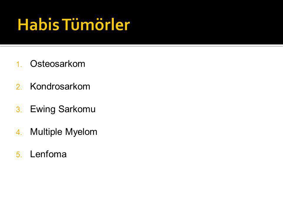 1. Osteosarkom 2. Kondrosarkom 3. Ewing Sarkomu 4. Multiple Myelom 5. Lenfoma