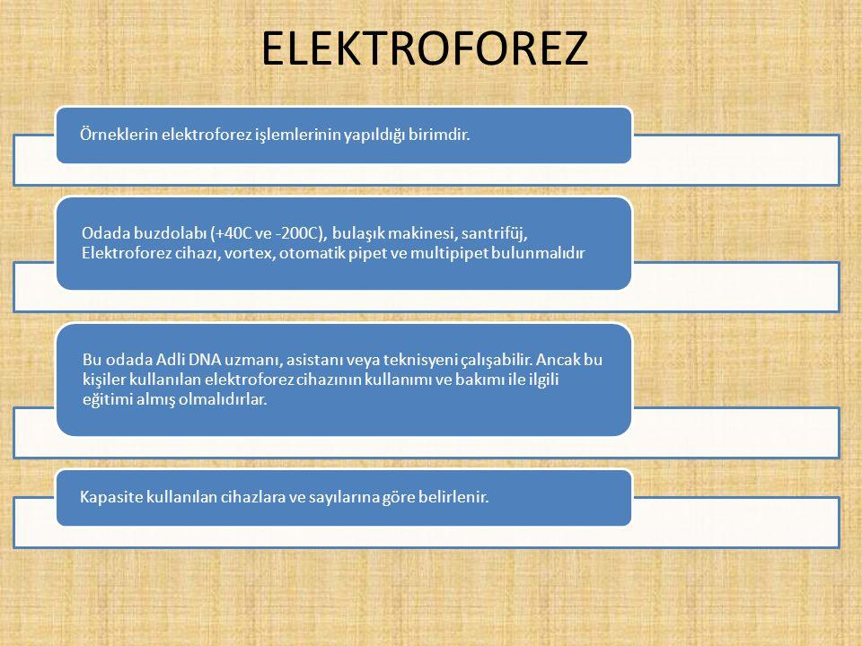 ELEKTROFOREZ Örneklerin elektroforez işlemlerinin yapıldığı birimdir. Odada buzdolabı (+40C ve -200C), bulaşık makinesi, santrifüj, Elektroforez cihaz
