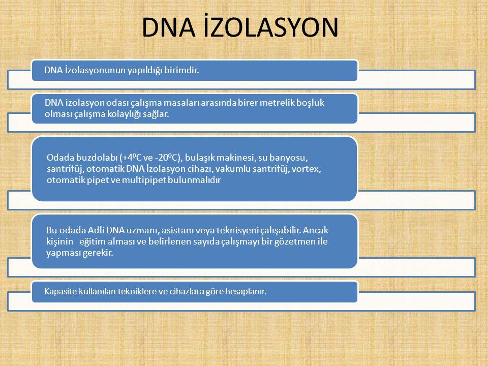 DNA İZOLASYON DNA İzolasyonunun yapıldığı birimdir. DNA izolasyon odası çalışma masaları arasında birer metrelik boşluk olması çalışma kolaylığı sağla