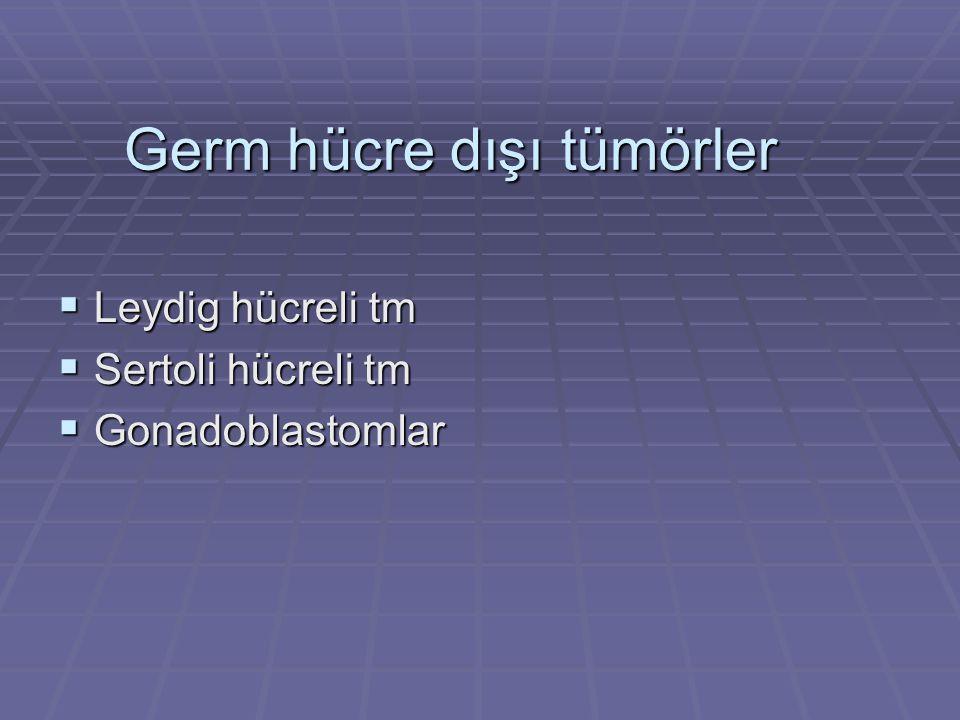 Germ hücre dışı tümörler  Leydig hücreli tm  Sertoli hücreli tm  Gonadoblastomlar
