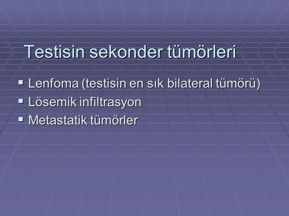 Testisin sekonder tümörleri  Lenfoma (testisin en sık bilateral tümörü)  Lösemik infiltrasyon  Metastatik tümörler