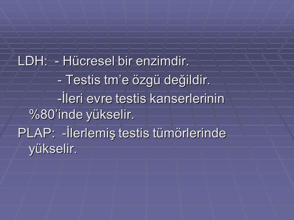 LDH: - Hücresel bir enzimdir. - Testis tm'e özgü değildir. - Testis tm'e özgü değildir. -İleri evre testis kanserlerinin %80'inde yükselir. -İleri evr