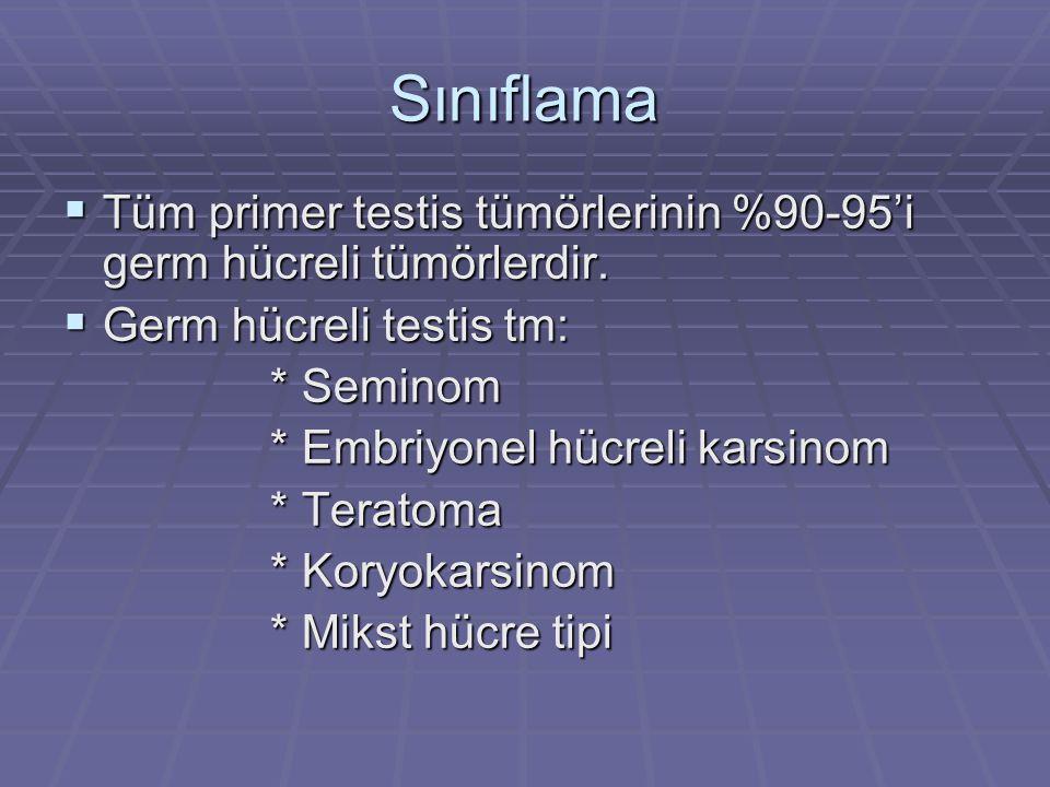Sınıflama  Tüm primer testis tümörlerinin %90-95'i germ hücreli tümörlerdir.  Germ hücreli testis tm: * Seminom * Seminom * Embriyonel hücreli karsi