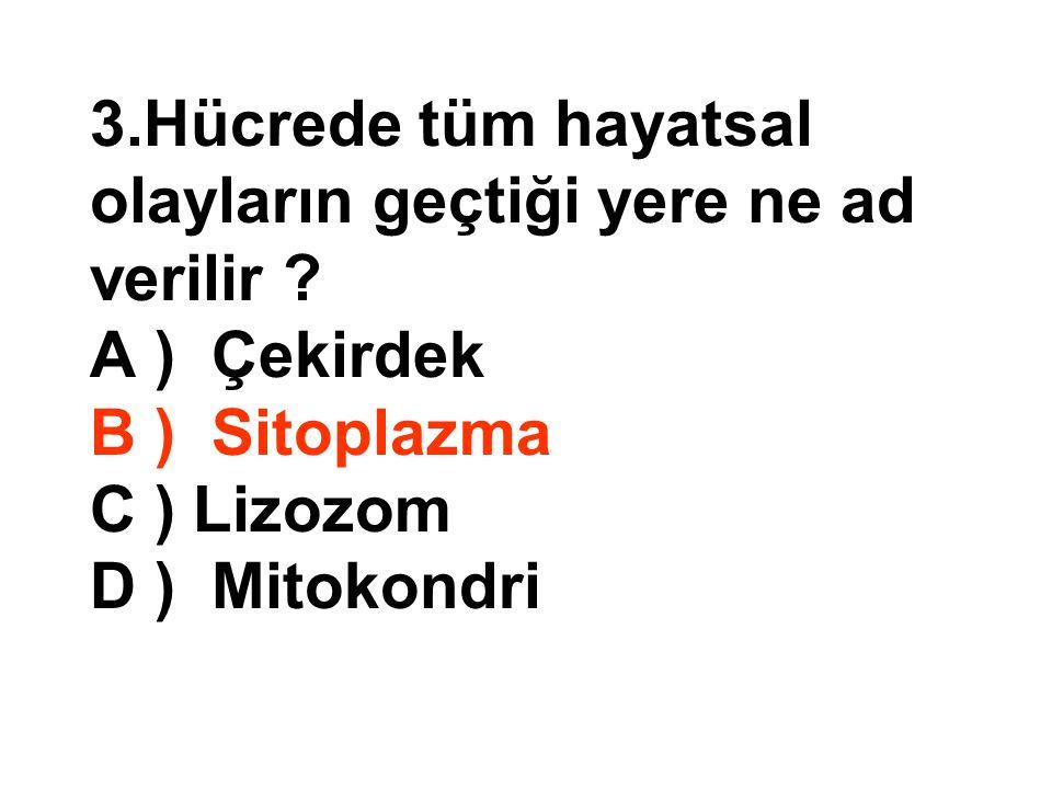 15.Aşağıdakilerden hangisi mitokondrinin görevidir.