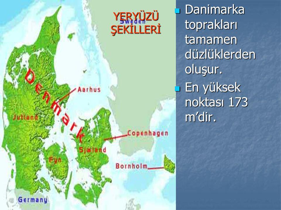 YERYÜZÜ ŞEKİLLERİ Danimarka toprakları tamamen düzlüklerden oluşur.