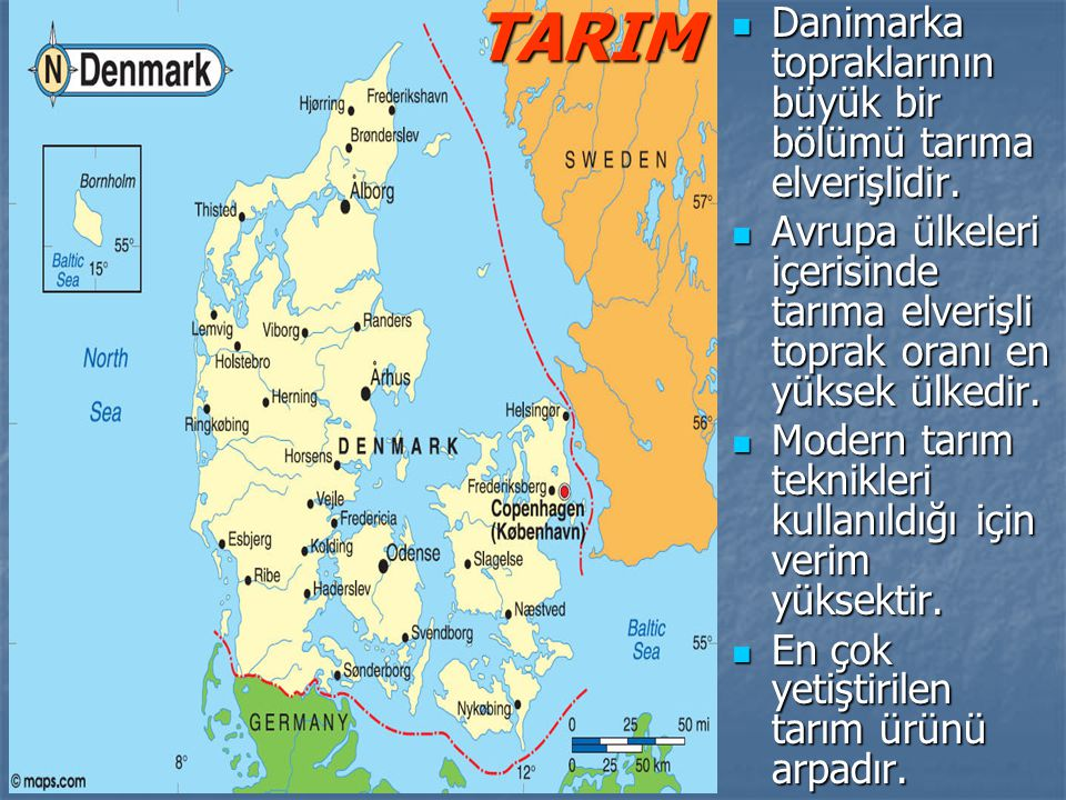 TARIM Danimarka topraklarının büyük bir bölümü tarıma elverişlidir.