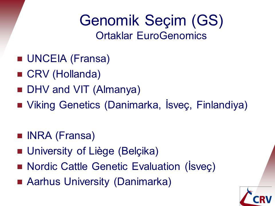 Genomik Seçim (GS) Ortaklar EuroGenomics  UNCEIA (Fransa)  CRV (Hollanda)  DHV and VIT (Almanya)  Viking Genetics (Danimarka, İsveç, Finlandiya) 
