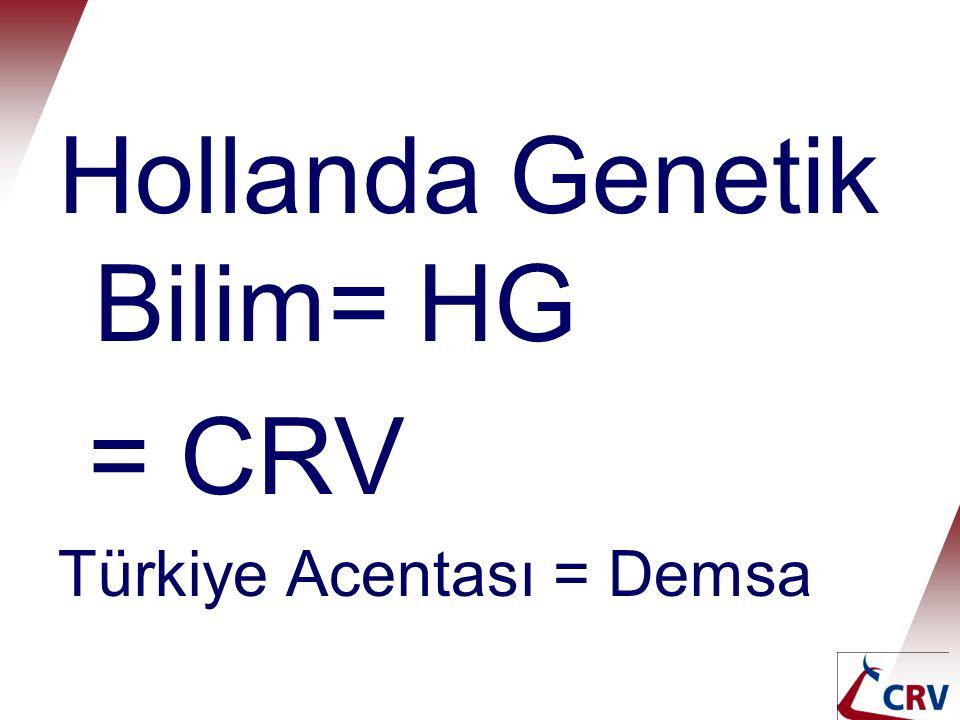 Hollanda Genetik Bilim= HG = CRV Türkiye Acentası = Demsa