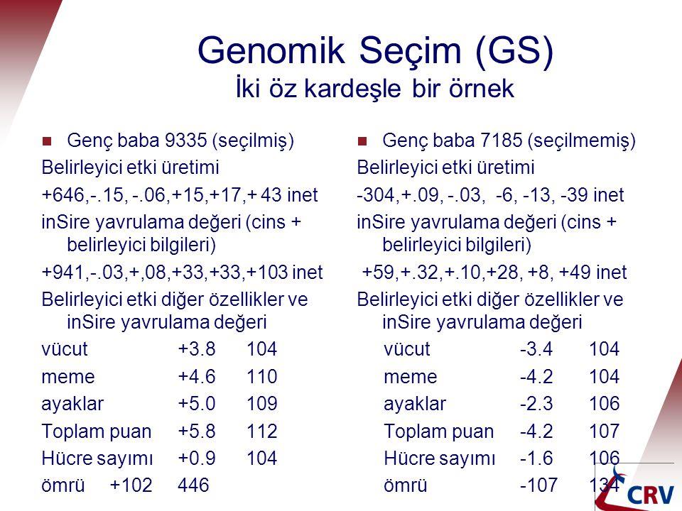 Genomik Seçim (GS) İki öz kardeşle bir örnek  Genç baba 9335 (seçilmiş) Belirleyici etki üretimi +646,-.15, -.06,+15,+17,+ 43 inet inSire yavrulama d